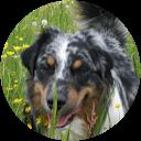 Joomla Support | Empfehlungen für Joomla Spezialist