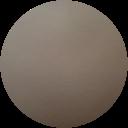 Regal K9 image