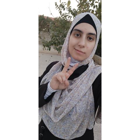 Alaa Alhijjawi's avatar