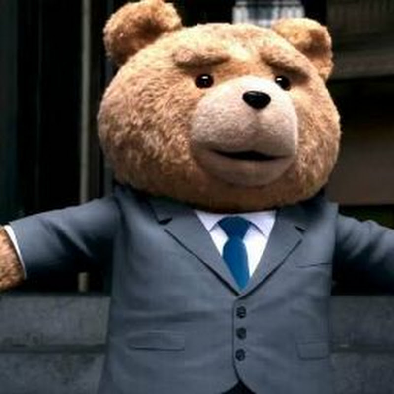 [Teddy variados]