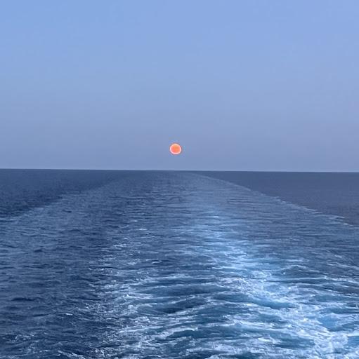 Mikhael Chen