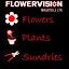 Flowervision Bristol Ltd