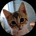 Image Google de Skyp Pie18