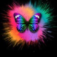 Debora Munhao