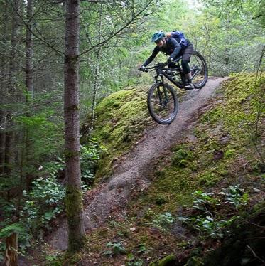 Julie Kanagy's avatar