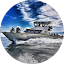 SpringTide Whale Watching & Eco Tours Marketing