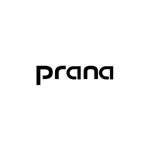 Prana Electronics