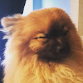 jenna 's profile image