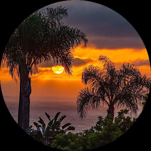 Nancy Snavely