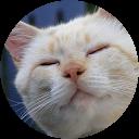 Pitre Le Chat