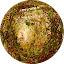 fitria mahyunis