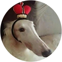 Certified Retard Google profile image