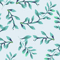 Melissa Linardos's profile image