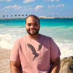 Mohamed Abdelrehim