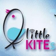 littlekites 30040