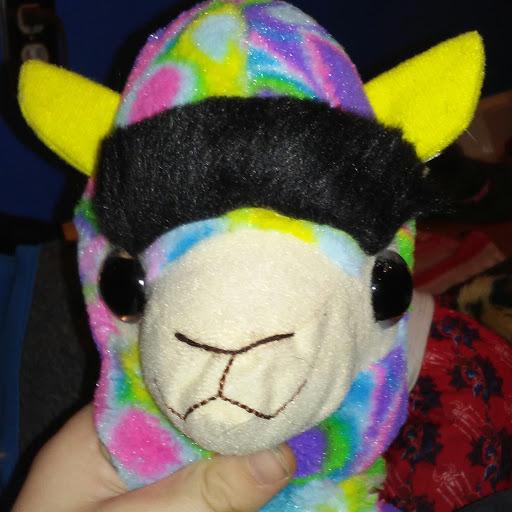 lacking llama