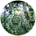 Fabian Jones review for Sunbusters Window Tinting
