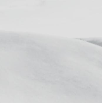 Snow _