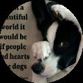 I heart dogs2