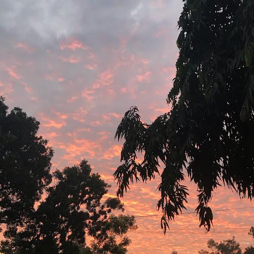 Trang Mâyy