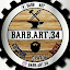 Barb Art 34