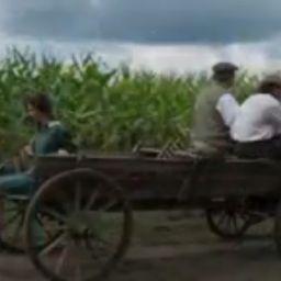 Miteshkumar-Patel