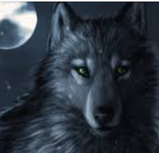 User image: Shadow Wolf
