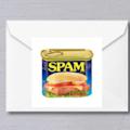 Ashton Pigsley SPAM's profile image