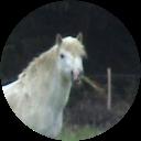 Image Google de Jean-Bernard Rabet