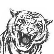 Tiger .711