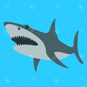 Gamer Shark