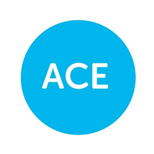 Ace Gaming237