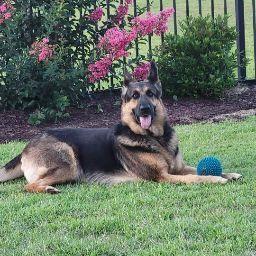Kathy Lerchenmueller