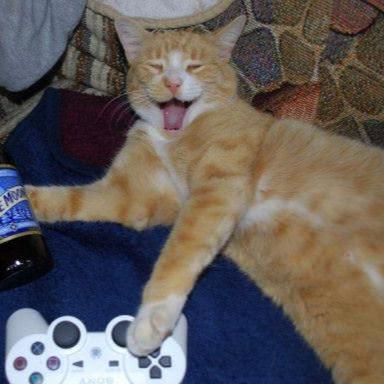 catmancat