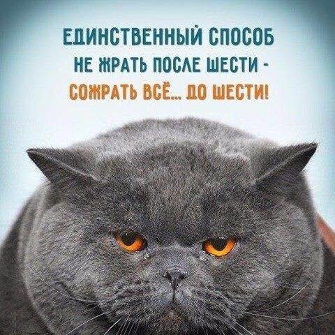 Даниил Карпов