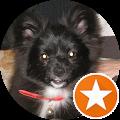 Image du profil de daniel (dbisi123)