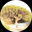 SANDRA CAMP