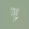 Kinsey Clark's profile image