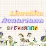 Limeñita Acuariana Podcast
