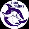Tiger Sharks Swim Team profile pic