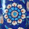 Vidya Murali