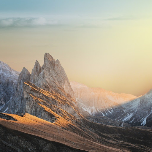 Profile picture of Lyrics Fever