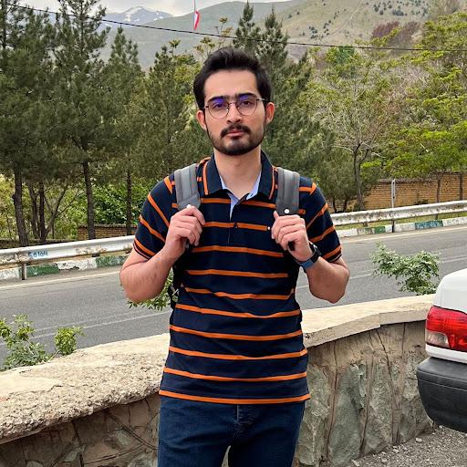 Hamed Raoufian Moghaddam's avatar