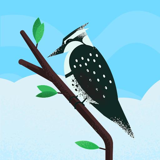 Chaveiro CPA