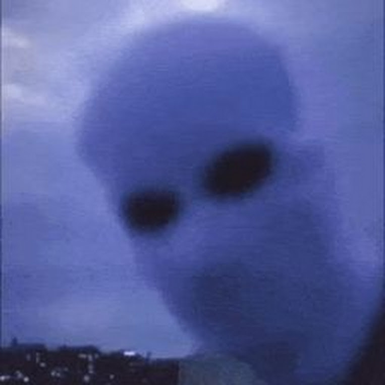 ToxicCrowYT