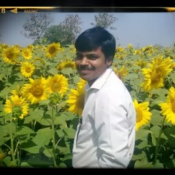 Profile photo of Kancharla