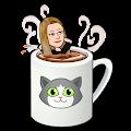 Erica Servold's profile image