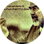 Mohd Almori