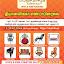 Dhyanalinga Enterprises