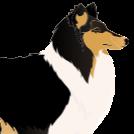Anne K. Frey's avatar